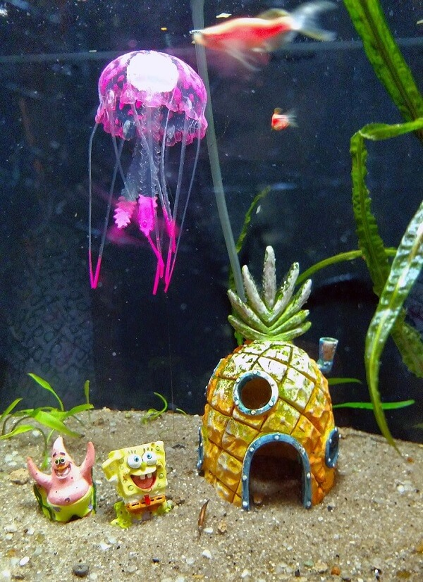Ornamentos divertidos para decorar o aquário