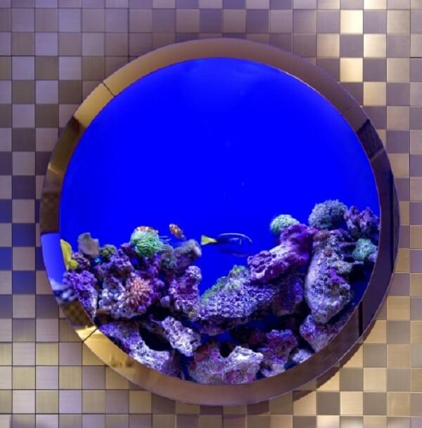Separe um lugar na parede para a montagem de um tanque com plantas para aquário