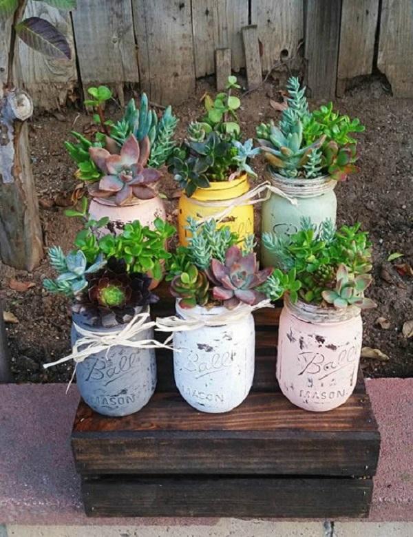 Utilize potes de vidro para cultivar suculentas