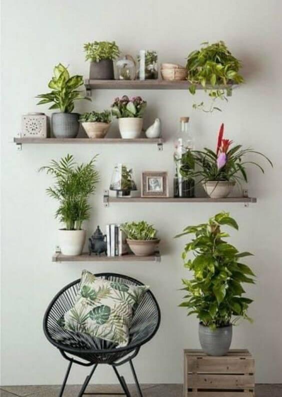 Casa decorada com vaso autoirrigável