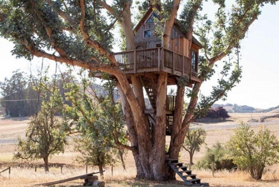 Lindo projeto de casa na árvore