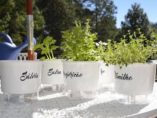 Monte uma linda horta com o vaso autoirrigável