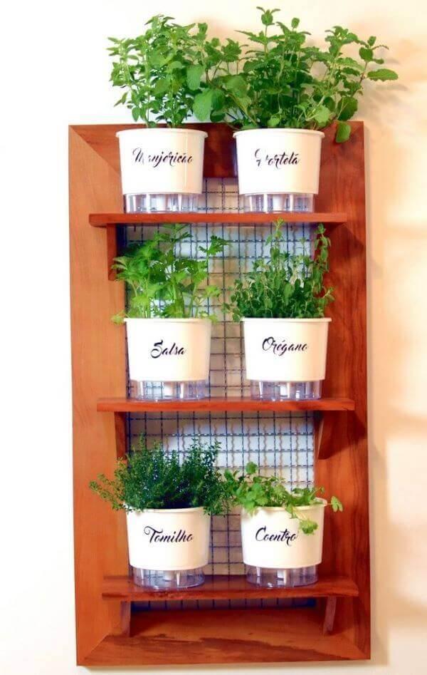 Horta em casa com vaso autoirrigável
