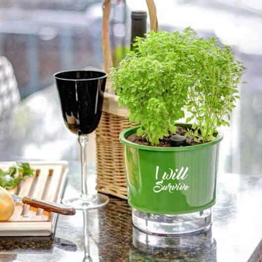 Vaso autoirrigável para decoração de casa