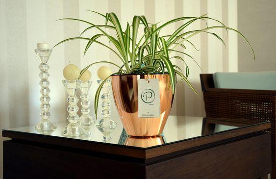 Vaso autoirrigável rose gold
