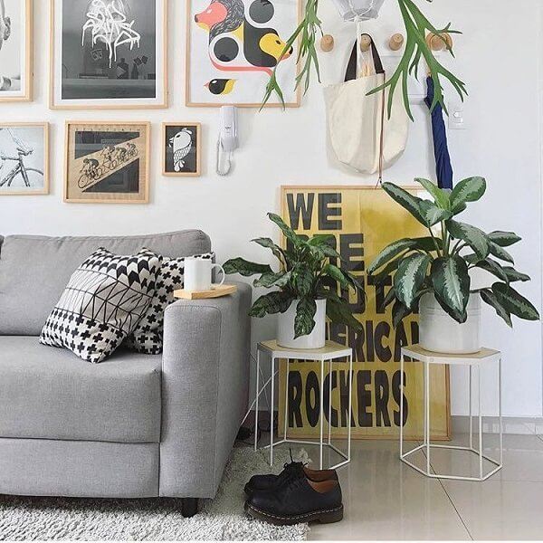 Decore a sala de estar com maranta