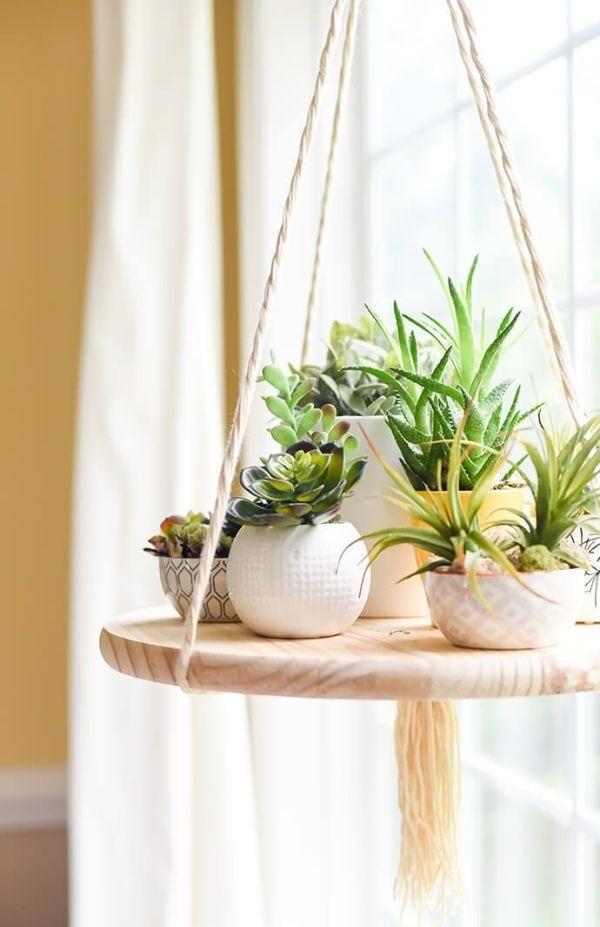 Vasos para suculentas brancos luz