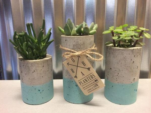 Vasos para suculentas cilindro