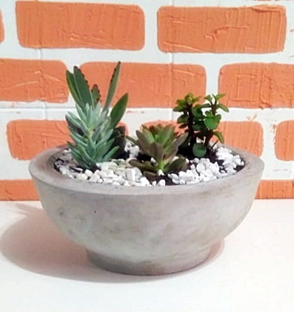Vasos para suculentas cimento bacia
