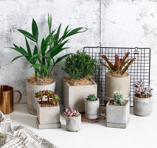 Vasos para suculentas cimento modelo