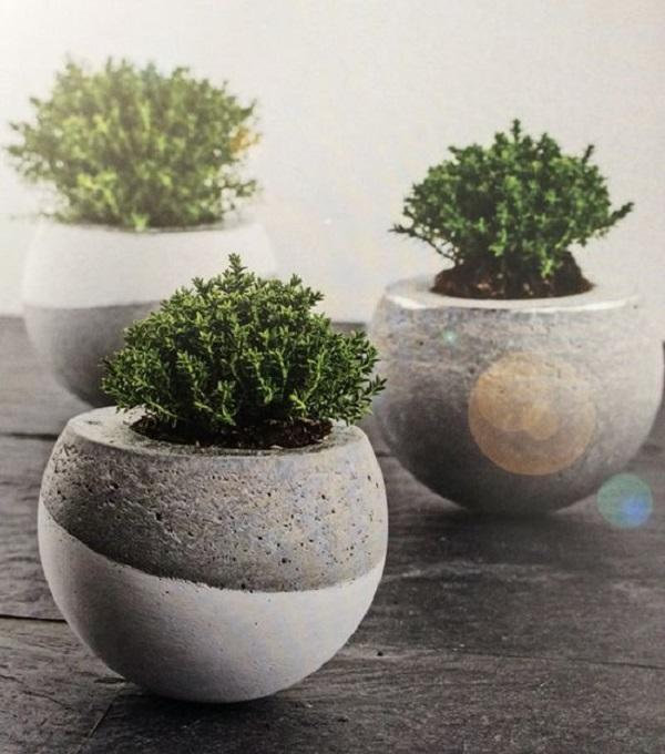 Vasos para suculentas cimento redondo e