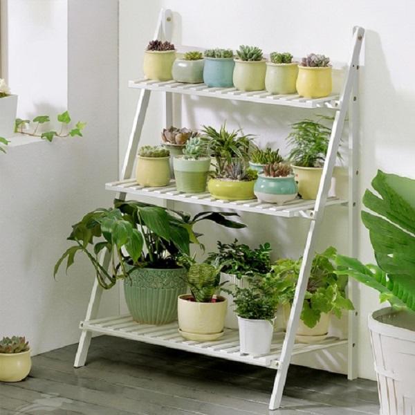 Vasos para suculentas coloridas