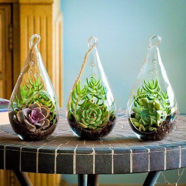 Vasos para suculentas em vidro diferentes