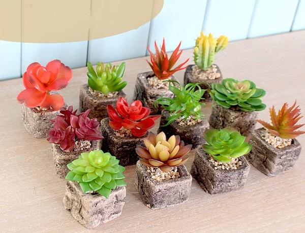 Vasos para suculentas mini vasos quadrados