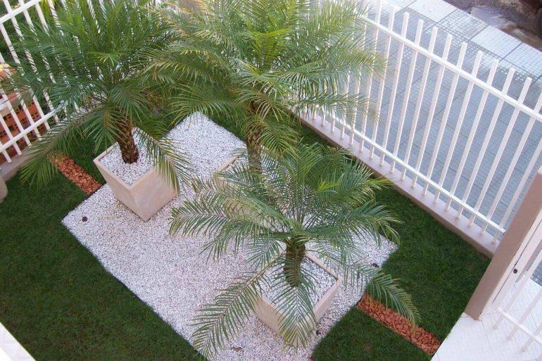 Canteiro com vegetação natural e pedrinhas brancas