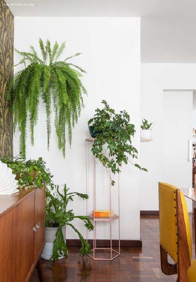 Decoração de casa com plantas pendentes Foto Pinterest