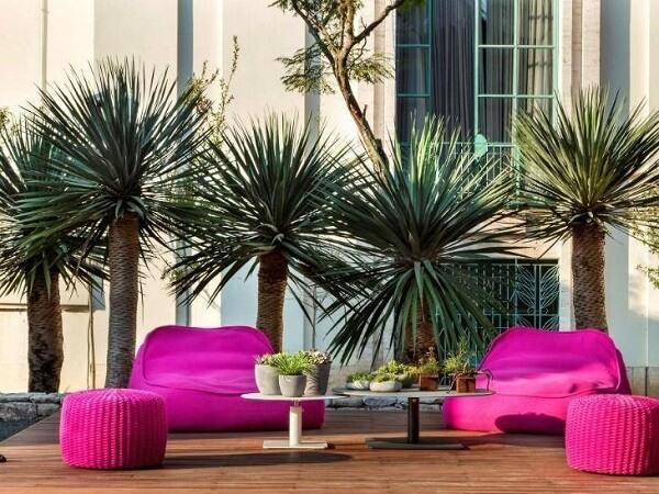 Diferentes espécie de coqueiros para jardim ajudam a complementar a decoração com estilo