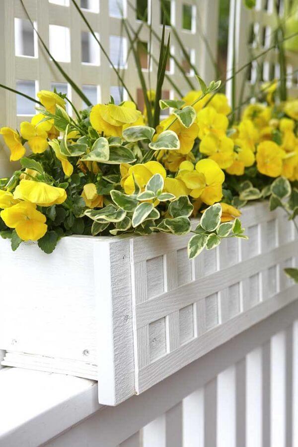 A flor amarela pequena de hibisco cultivado na floreira branca se destaca na decoração