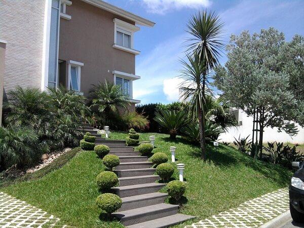 O coqueiro de jardim complementa o projeto paisagístico da fachada da casa