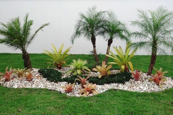 O coqueiro de jardim deixa a decoração da área externa ainda mais especial