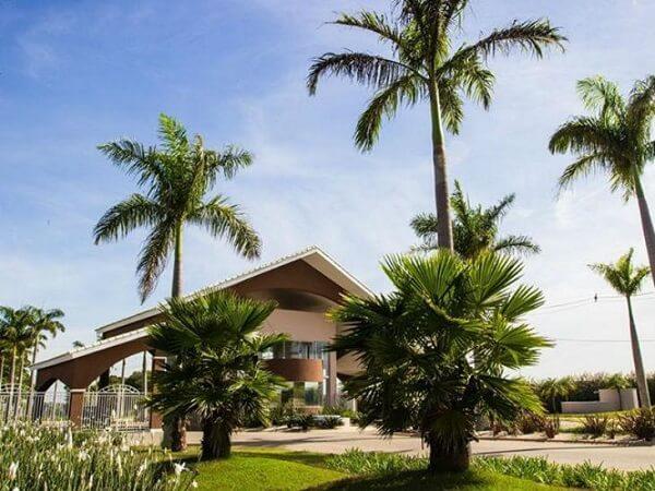 Os coqueiros de jardim trazem charme para a entrada da casa