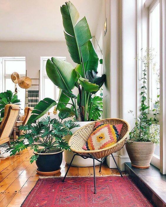 Use os vasos decorativos grandes na sala de estar iluminada