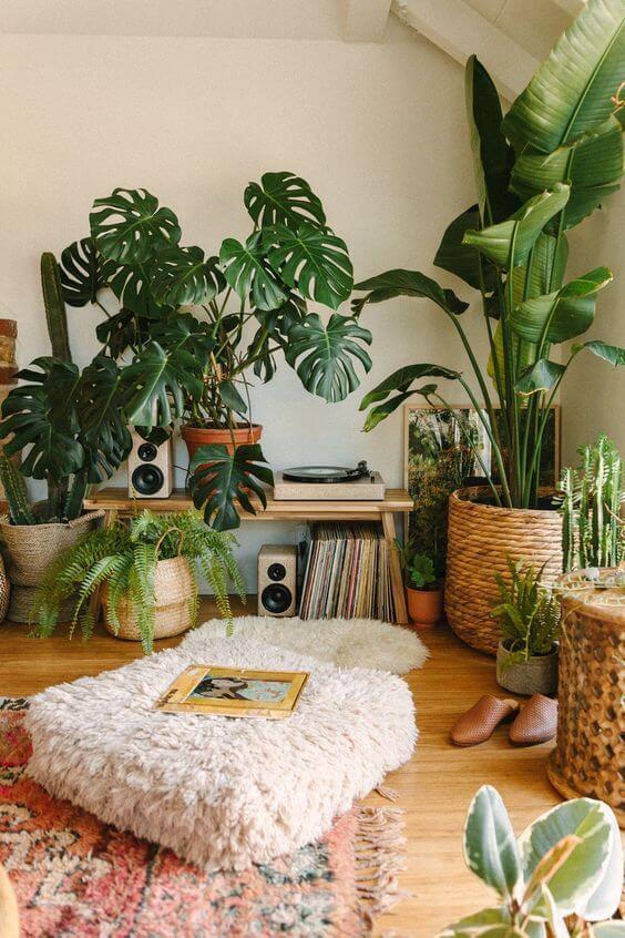 Casa decorada com vasos grandes para plantas