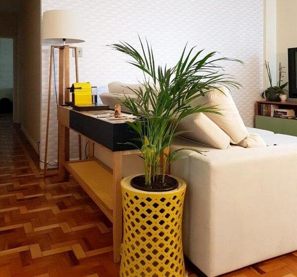 Coqueiro de jardim da espécie areca-bambu no apartamento