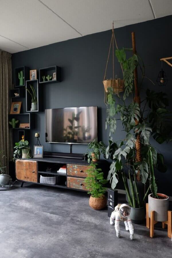 cor cinza chumbo para decoração de sala de estar com vários vasos de plantas Foto ZoSammieEnzo