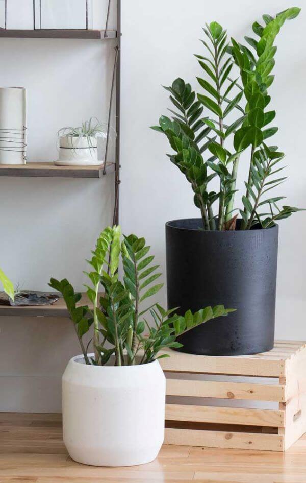 Decoração moderna com vaso grande preto e branco