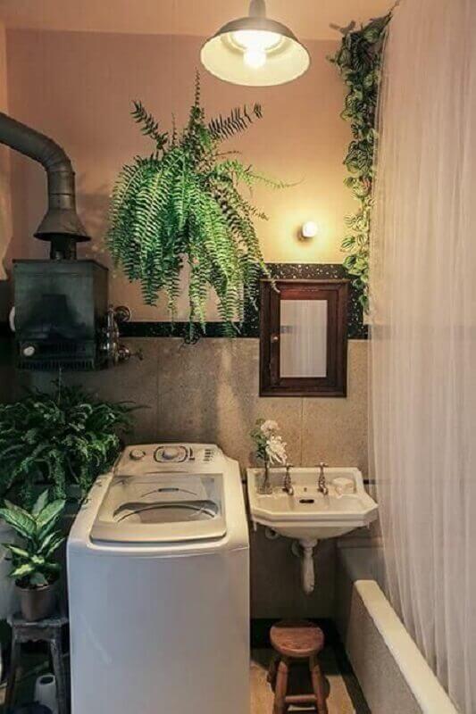 plantas pendentes para decoração de lavanderia simples e pequena