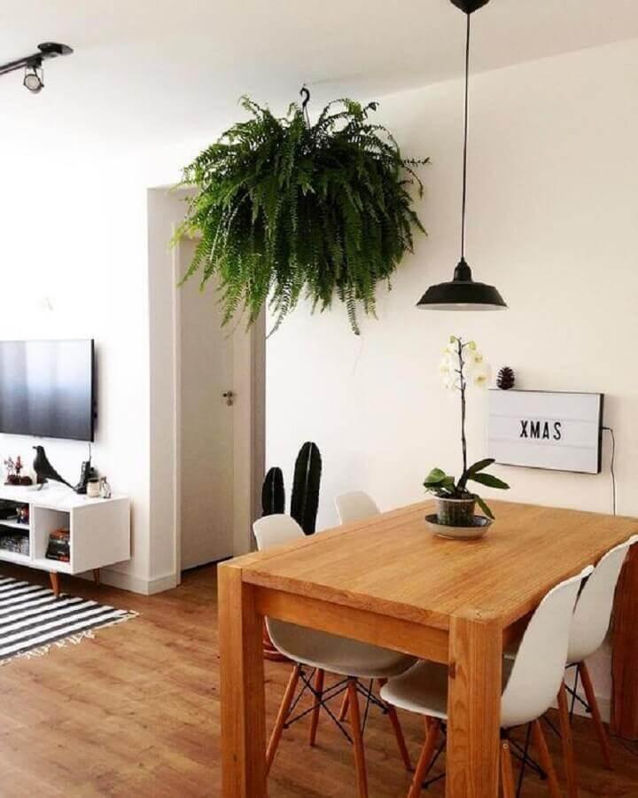 plantas pendentes samambaia para decoração de sala de jantar pequena e simples Foto Archello