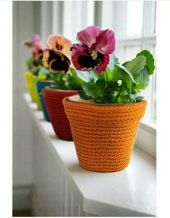 Plantas pequenas com flores violetas na janela