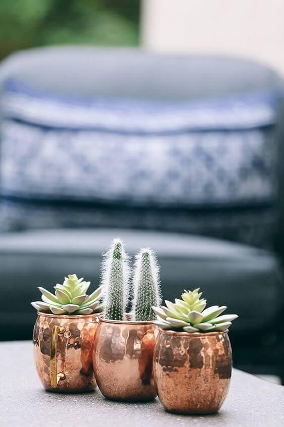 Plantas pequenas com vaso rose gold