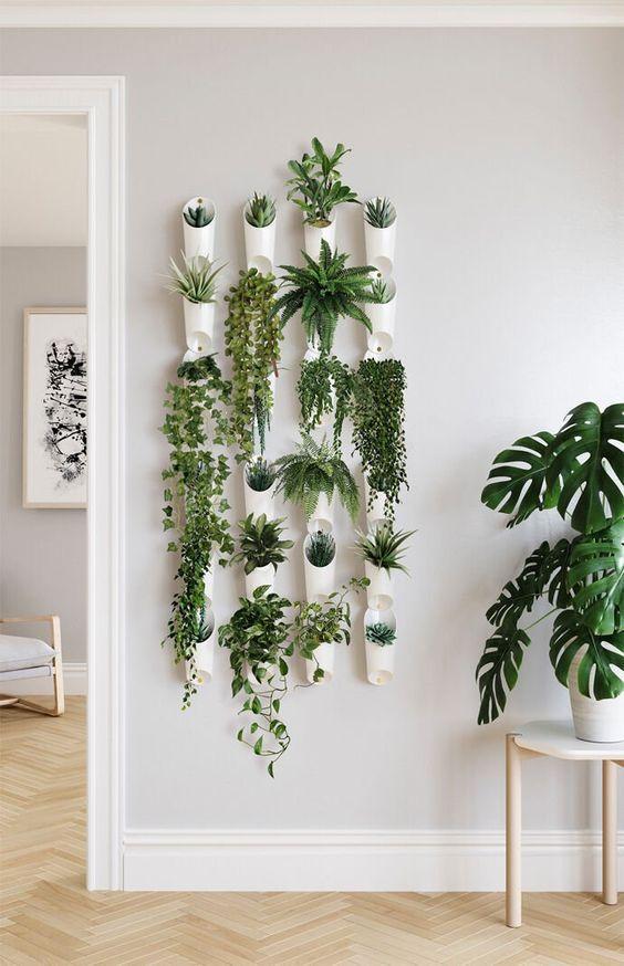 Plantas pequenas na sala de estar moderna