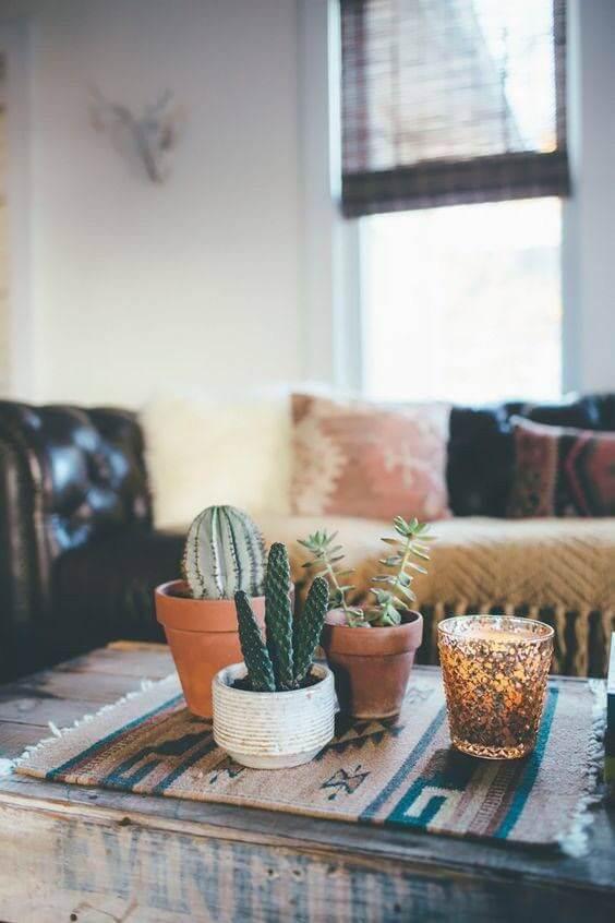Plantas pequenas para sala de estar