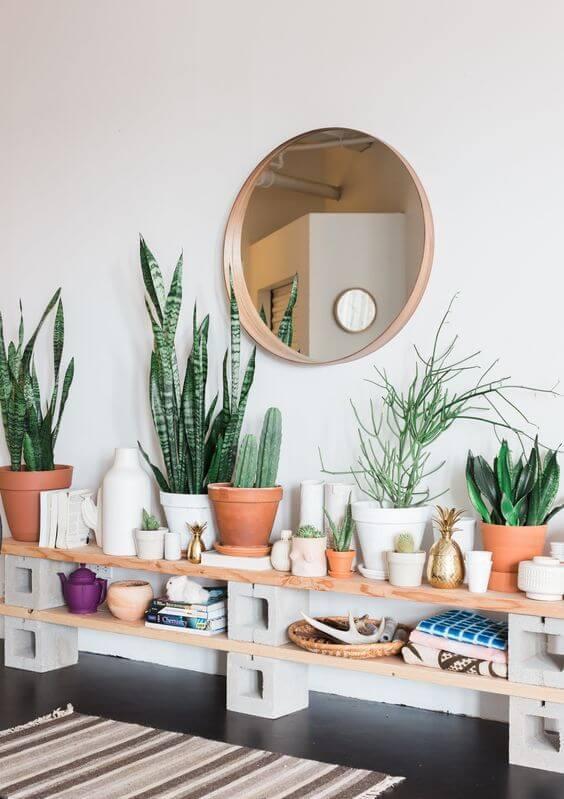 Plantas pequenas no aparador rustico