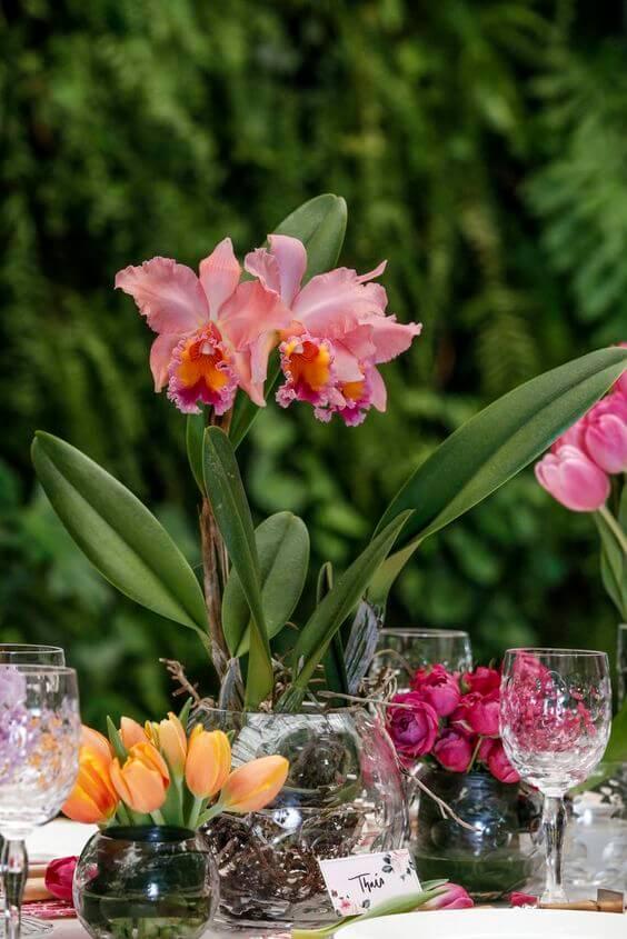 Plantas com flores pequenas na mesa de jantar