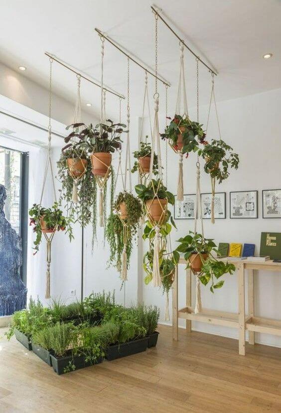 As plantas pequenas suspensas também são ótimas opções para decoração de casa
