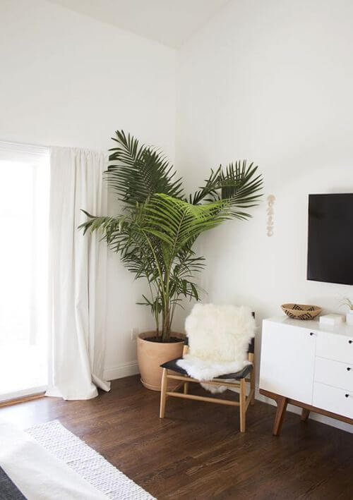 sala moderna com vaso de barro grande