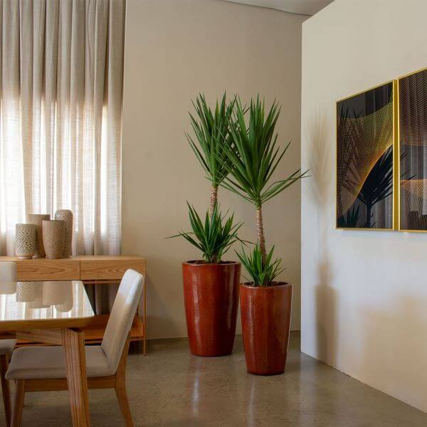 Sala com vaso grande moderno