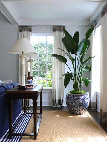 Sala de estar com vaso grande no canto