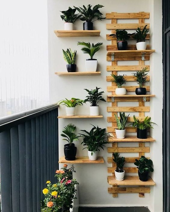 Decore a sua casa com vasos para plantas pequenas variados
