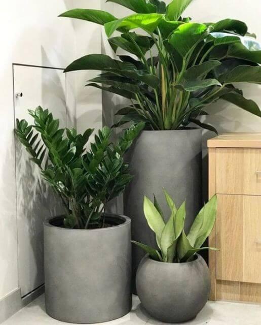 Vaso grande de cimento na casa moderna