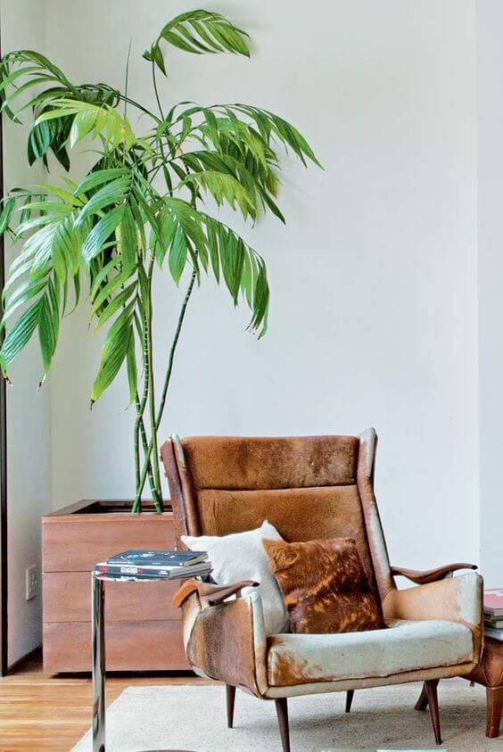 O vaso grande de madeira também é uma opção para sua sala de estar