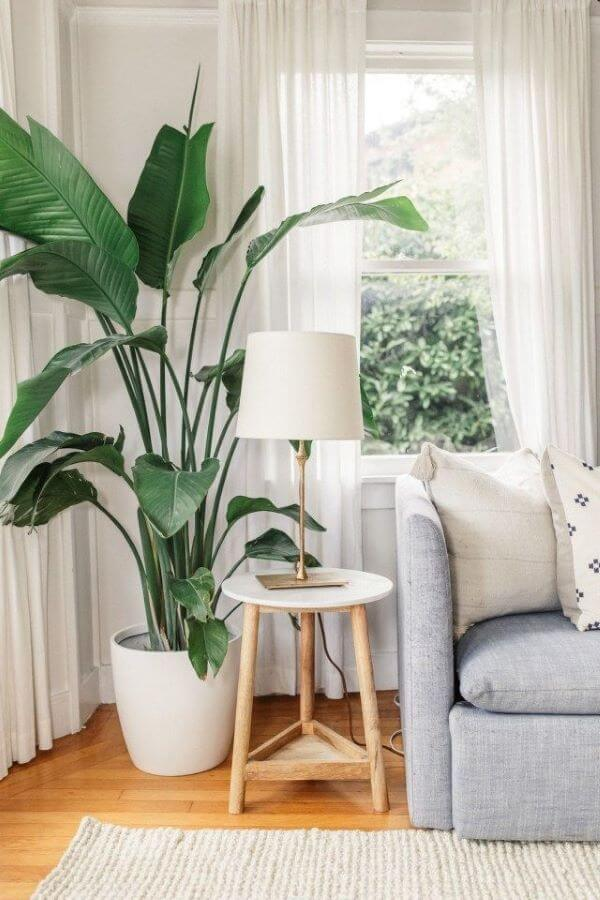 Vaso grande para sala de estar moderna e confortável