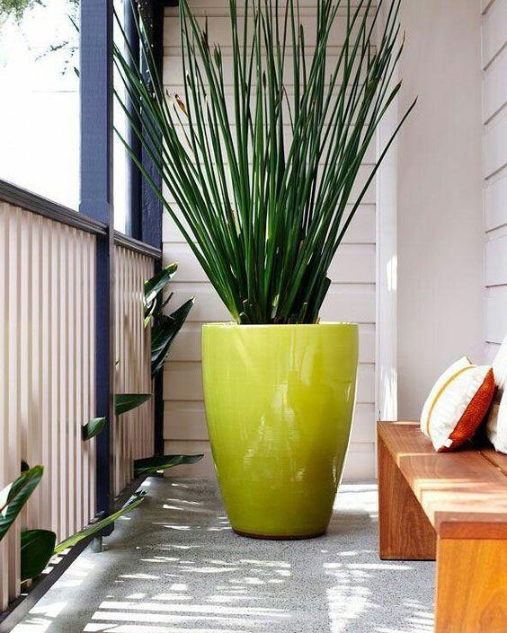 Vaso grande verde na varanda moderna