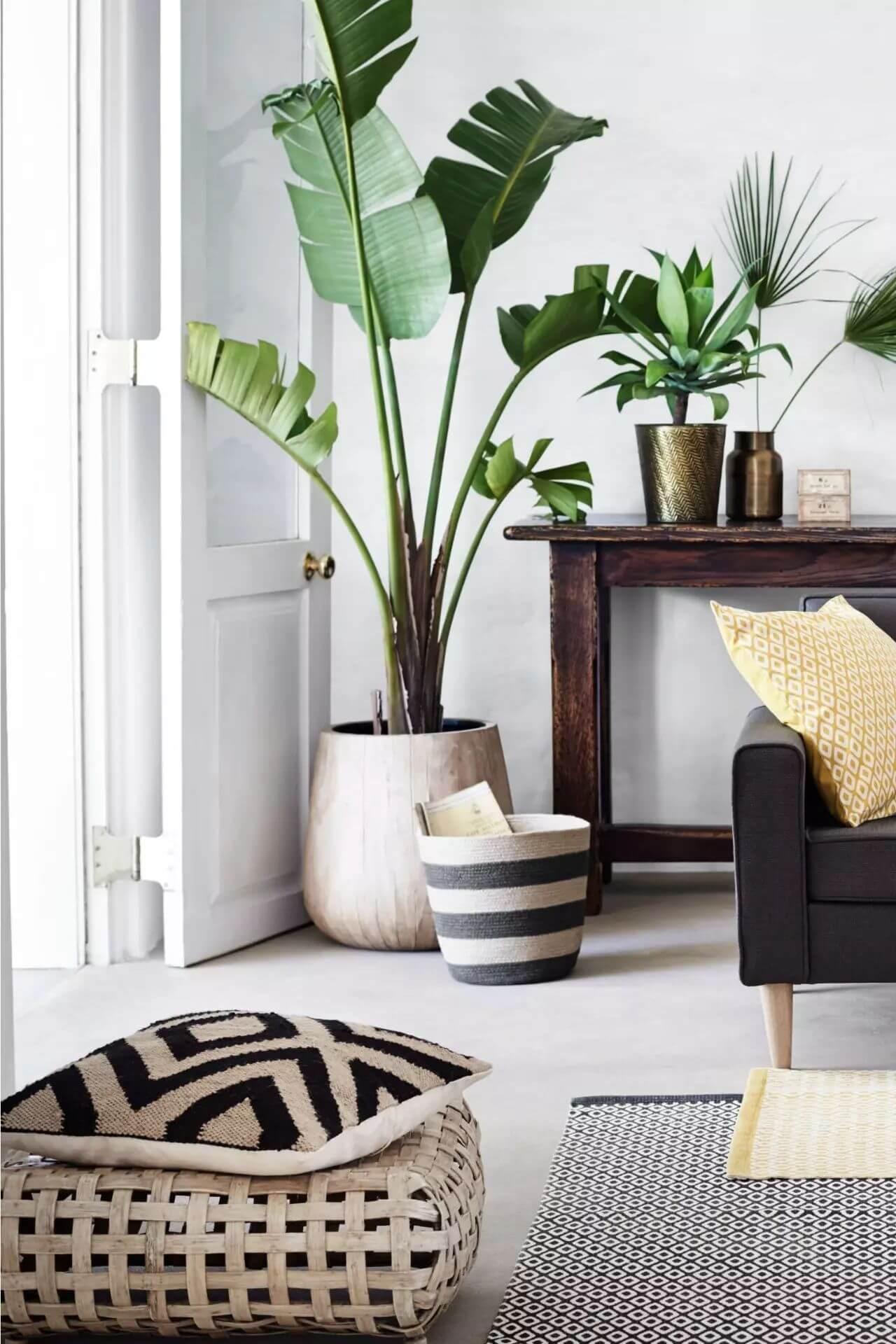 Sala moderna com vaso grande e móveis de madeira