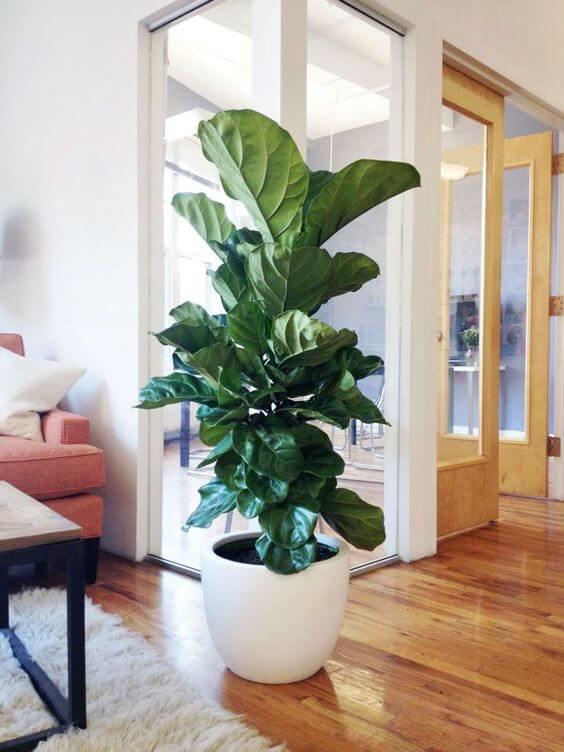 O vaso grande branco é lindo para decorar a sala de estar