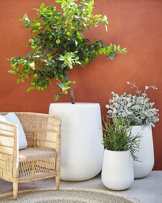 Vaso grande na varanda